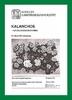 Kalanchoe2.jpg